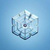 Natuurlijke sneeuwvlok macronaturals Royalty-vrije Stock Afbeelding