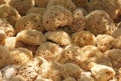Natuurlijke sponsen Stock Afbeelding