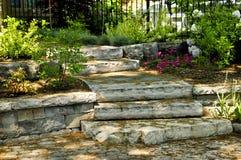 Natuurlijke steenstappen Stock Foto's