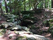 Natuurlijke steenstappen stock afbeeldingen