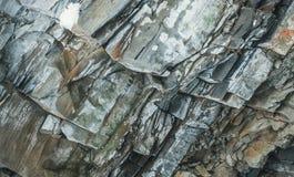Natuurlijke steentextuur De rotsachtige richel in de Karpaten Stock Foto