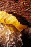 Natuurlijke texturen stock fotografie
