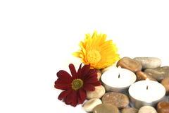 Natuurlijke therapie voor mening, lichaam en ziel stock afbeeldingen