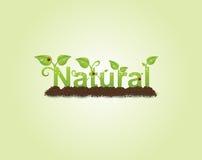 Natuurlijke titel vector illustratie