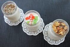 Natuurlijke verse eigengemaakte yoghurt van koemelk met de hand gemaakt met probiotic bacteriën Royalty-vrije Stock Afbeelding