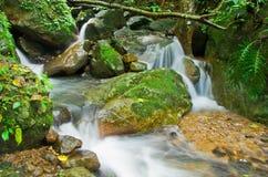 Natuurlijke waterstroom Royalty-vrije Stock Fotografie