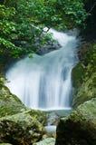 Natuurlijke waterstroom Royalty-vrije Stock Afbeelding