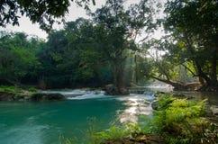 Natuurlijke waterstroom Royalty-vrije Stock Foto's