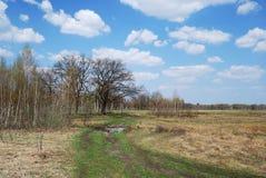 Natuurlijke weg op de weide in de vroege lente. Stock Foto