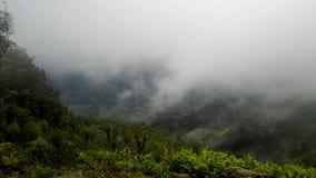 Natuurlijke wildernis van Sri Lanka Royalty-vrije Stock Foto