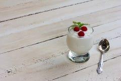 Natuurlijke yoghurt Stock Foto