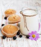 Natuurlijke yoghurt met verse blackcurrants Stock Foto's