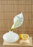 Natuurlijke zeep Stock Fotografie