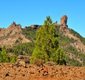 Natuurreservaat Roque Nublo met blauwe hemelachtergrond, Gran Canaria, Canarische Eilanden Stock Foto