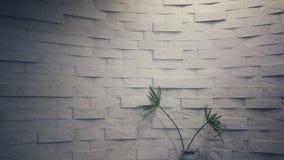 Natuursteenbehang, steenpatroon, steenachtergrond, samenvatting Royalty-vrije Stock Afbeelding