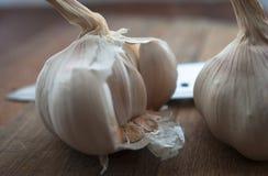 Natuurvoedingvoorbereiding, het koken concept: de ruwe hoofden van knoflookbollen, mes op een rustieke houten lijstachtergrond Stock Afbeelding