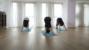 Nauczyciel i dwa pięknego ucznia robi joga uporządkowywamy wpólnie podczas klasy zdjęcie wideo