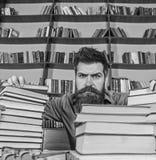 Nauczyciel lub uczeń z brodą siedzimy przy stołem z szkłami, defocused Mężczyzna na surowej twarzy między stosami książki, podcza fotografia royalty free