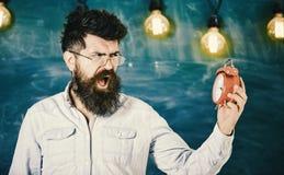 Nauczyciel w eyeglasses trzyma budzika Mężczyzna z brodą i wąsy na gniewnych rozkrzyczanych twarzy spojrzeniach przy zegarem Szko Zdjęcia Stock