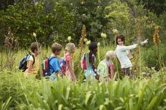 Nauczyciel Z dziećmi Na Śródpolnej wycieczce zdjęcia royalty free