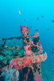 Naufrágio no azul de oceano, Maldivas foto de stock