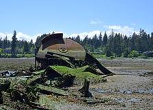 Naufrágio oxidado em Royston, ilha de Vasncouver Foto de Stock
