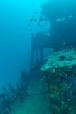 Naufrage dans le bleu d'océan, Maldives image libre de droits