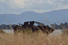 Naufrage du Nouvelle-Zélande caché dans le marais photographie stock