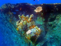 Naufrage USS Liberty - Bali Indonésie Asie image libre de droits