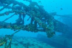 Naufragio nel blu di oceano, Maldive fotografia stock