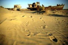 Naufragio nel deserto Fotografia Stock Libera da Diritti