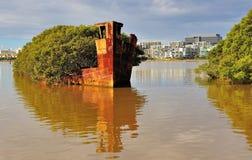 Naufragio storico - baia di Homebush, Sydney Immagini Stock