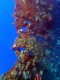 Naufragio USS Liberty - Bali Indonesia Asia fotografia stock libera da diritti