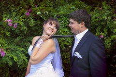 Naughty bride leads her groom on a tie stock photos