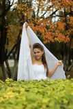 Naughty bride Stock Images