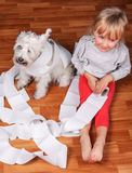 Naughty child and white schnauzer puppy sitting on. Naughty child and white schnauzer puppy dog sitting on a floor and playing with  roll of toilet paper Royalty Free Stock Photos