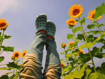Naughty girl in sunflower field Stock Photography
