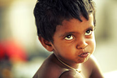 Naughty Indian little boy Stock Images