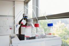 Nauka eksperyment z słojami substancje chemiczne obraz stock