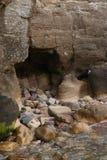 Nauka formacje, Northumberland i Szkockie granicy Rockowe i Kopalne, Obraz Royalty Free