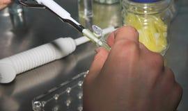 nauka mikrobiologii zdjęcia stock