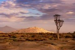 Naukluft-Naturreservat, Namibische Wüste, Namibia Lizenzfreie Stockfotografie