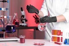 Naukowa dolewania odczynnik w kolbę w chemii laboratorium obraz royalty free