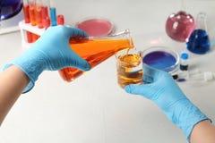 Naukowa dolewania odczynnik w zlewkę przy stołem w chemii laboratorium obrazy stock