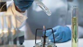 Naukowa mienia tubka z gotowaniem wścieka się ciecz nad palnikiem, lab eksperyment zdjęcie royalty free