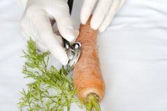 Naukowiec egzamininuje niezdrowego jedzenie Fotografia Royalty Free