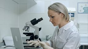 Naukowiec, studencki używa laptop lub mikroskop Fotografia Stock