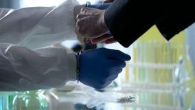 Naukowiec zakładający kajdanki dla bezprawnego badania, potajemnie farmaceutyczni labs fotografia royalty free