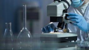 Naukowy lab ekspert egzamininuje nową substancję dla skóry opieki kosmetyków, nauka zdjęcia stock