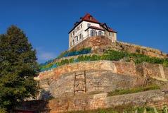 Naumburg vineyard Stock Image